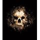 Kaukolė