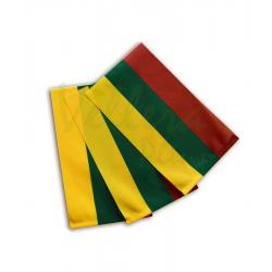Lietuvos spausta protokolinė vėliavėlė