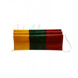 Lietuvos vėliava jachtai